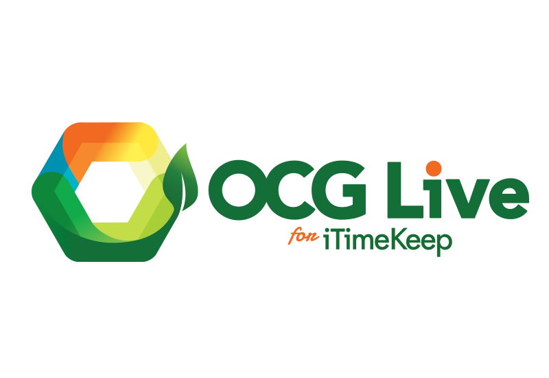 Bellefield - OCG Live