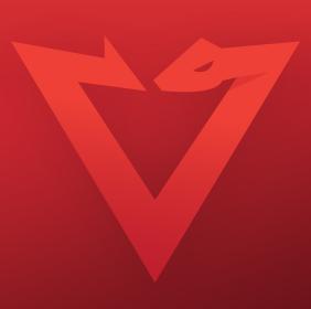 PacketViper
